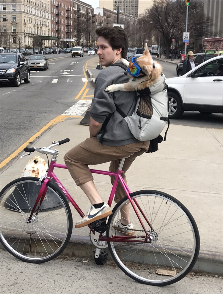 Bike To Work Day!